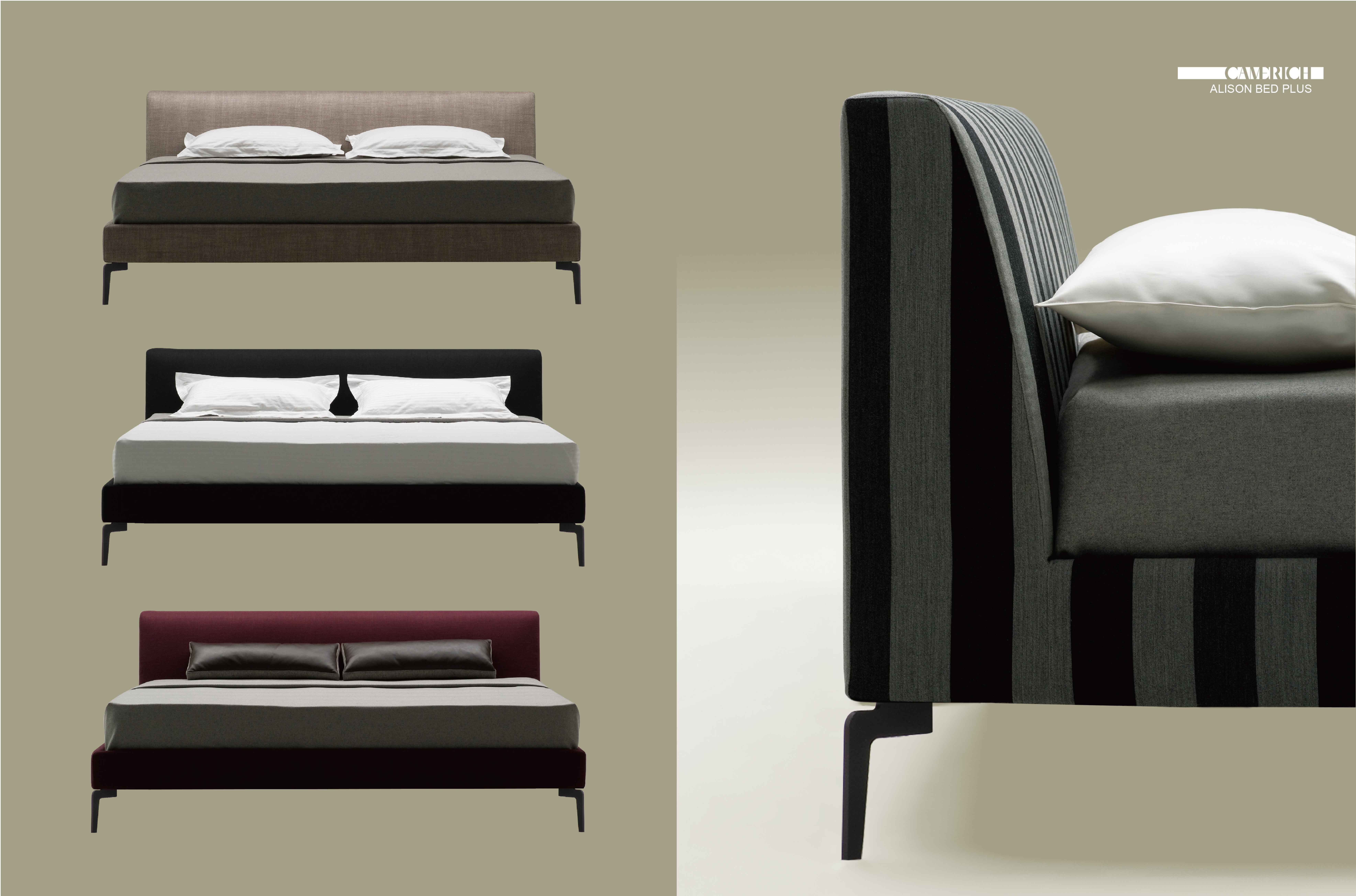 Alison Bed Plus Camerich Bangladesh